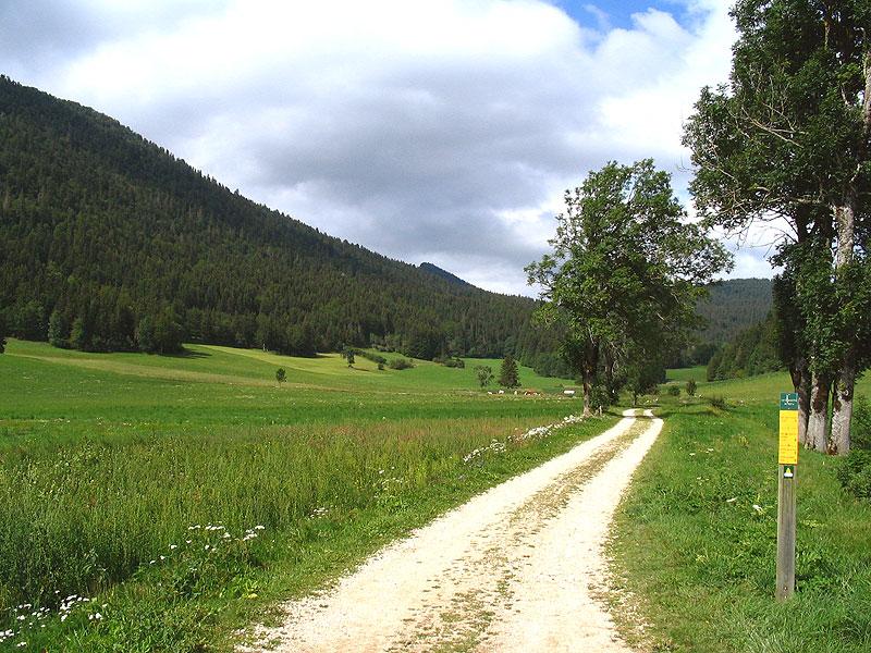 sentier - La Tour