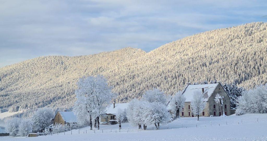 paysage neige Autrans forêt