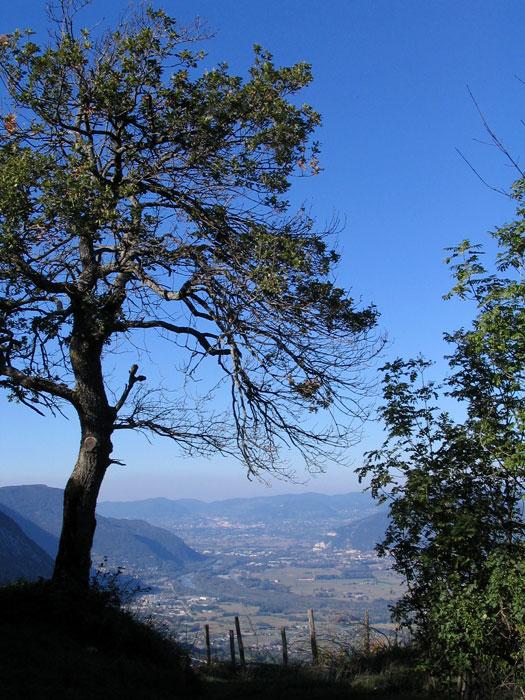 Chemin avec vue sur l'Isère