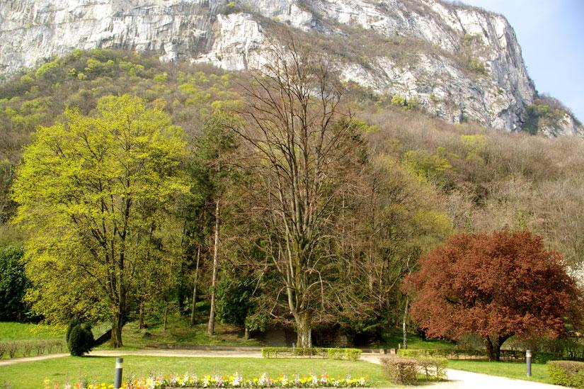 arbres jardin notre Dame Sassenage