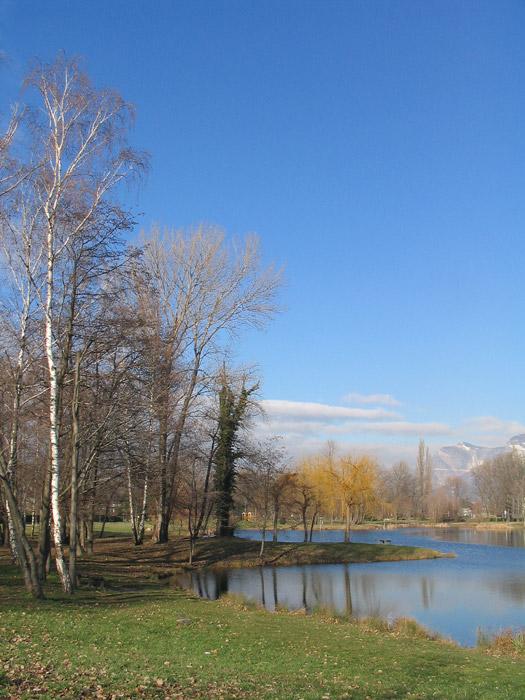 parc ovalie automne