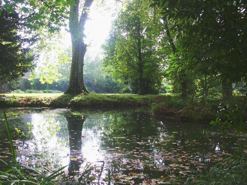 parc du château pièce d'eau
