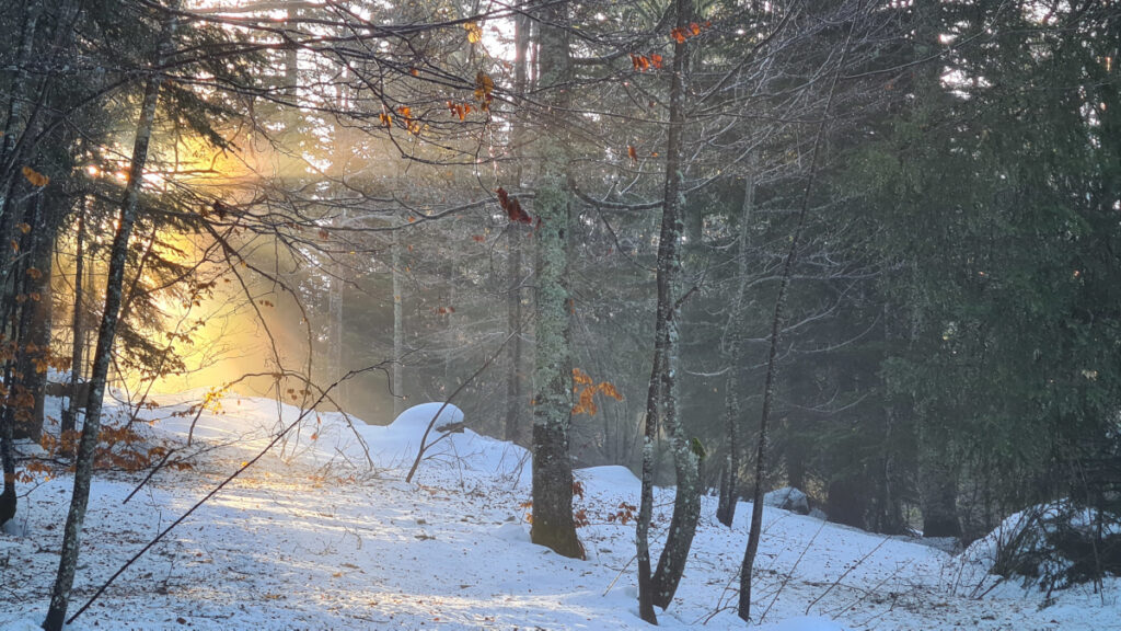 route de la grande brèche neige rayon soleil autrans
